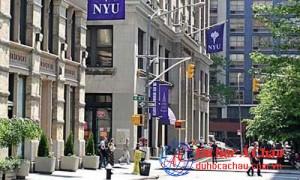 Đại học New York, New York University, du học mỹ