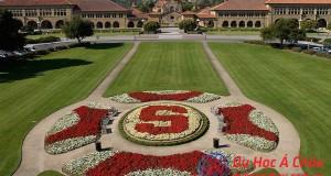 đại học Stanford, Stanford University, du học mỹ
