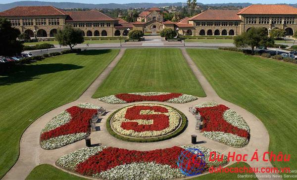Trường đại học Stanford (Stanford University) - California, Mỹ