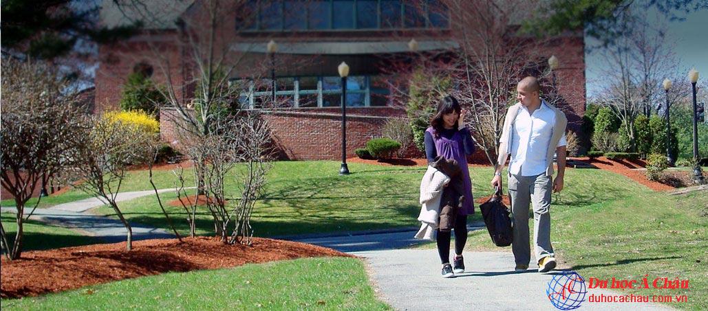 Giới thiệu Trung tâm Anh ngữ TALK dành cho các bạn du học Mỹ