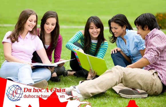 Công ty tư vấn du học Canada uy tín tại Việt Nam
