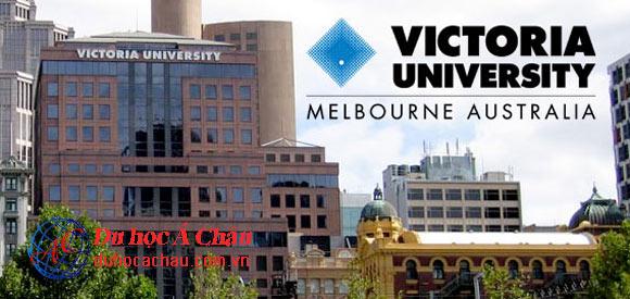 Các Trường Đại Học Có Học Phí Rẻ & Chất Lượng Ở Úc