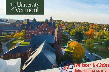 Tìm hiểu trường Vermont Đại học kinh doanh hàng đầu Mỹ