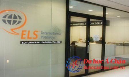 Universal English College, trường ELS sydney