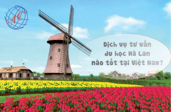 Dịch vụ tư vấn du học Hà Lan nào tốt ở Việt Nam?
