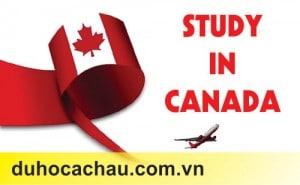 dịch vụ tư vấn du học canada