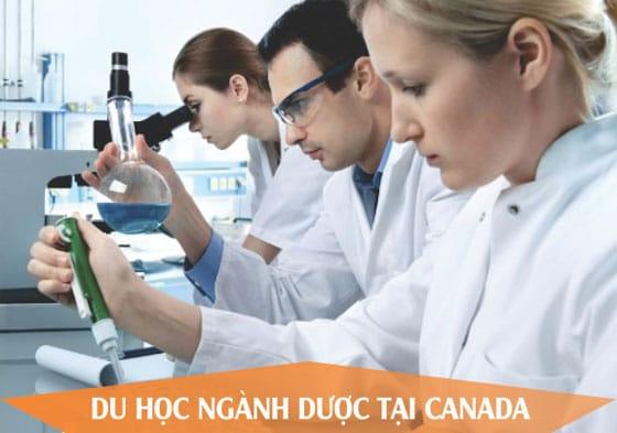 Du học ngành dược tại Canada 2017, cơ hội định cư cao