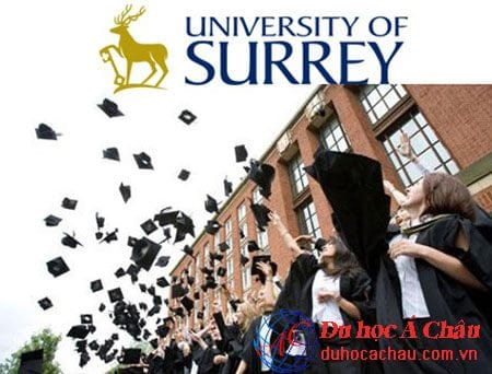du học Anh Quốc, Đại học Surrey