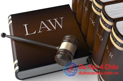 Du học Anh ngành luật: lựa chọn đúng đắn