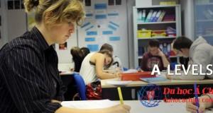 A-level, chứng chỉ A-level khi du học Anh Quốc