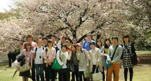 du học Nhật Bản 2017, tư vấn du học Nhật uy tín