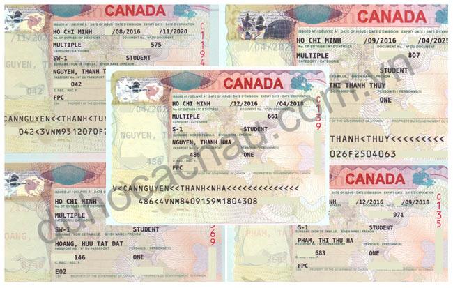 Đạt visa du học Canada nhanh chóng với chương trình CES cùng Á Châu