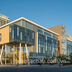 Trường Sheridan College Canada: Yêu cầu đầu vào, Chi phí, Ngành học