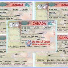 Chúc mừng visa du học Canada diện SDS và CES