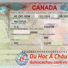 Nhiều hồ sơ du học, du lịch Mỹ, Canada, Úc đạt được kết quả visa