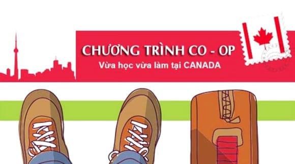 chương trình Co-op Canada